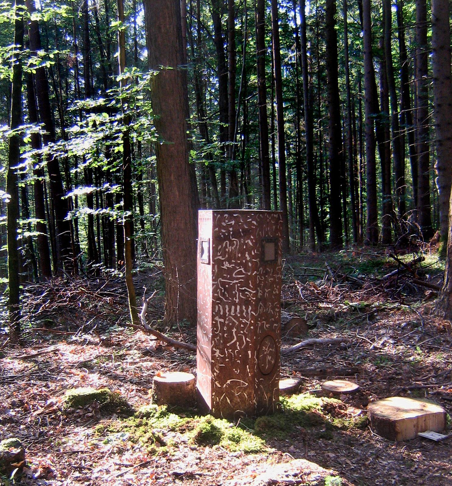 Waldelfenbeingelächter - Klanginstalltion, Kunstpfad Herwangen 2008